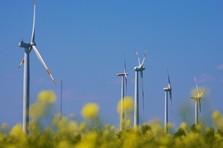 L'Allemagne, championne de l'électricité verte